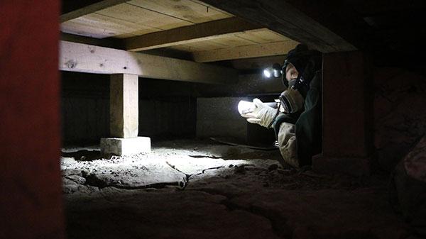 ネズミ駆除作業風景 床下3