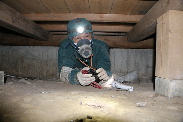 ネズミ駆除作業風景 床下7