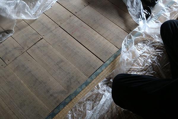 ネズミ駆除作業風景 床下6