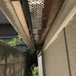 ネズミ侵入口封鎖 天井裏