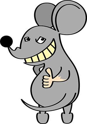 ネズミ駆除予防と対策