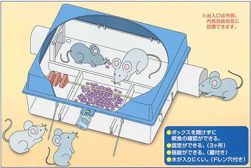ネズミ駆除 殺鼠剤(毒餌)ボックスの中のイメージ図