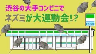 ネズミが大運動会 動画サムネイル