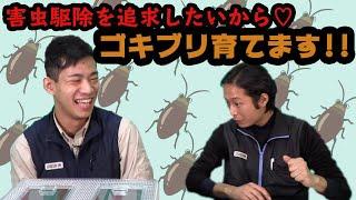 ゴキブリを飼い始めたダスキンスタッフ 動画サムネイル